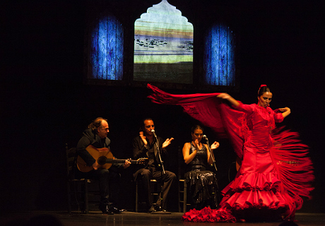 Teatro flamenco madrid espect culo flamenco en madrid for Espectaculos teatro barcelona